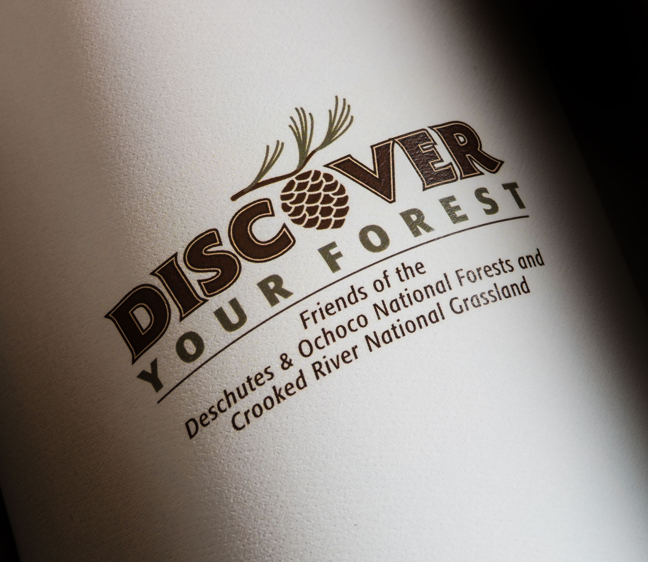 Discover Your Forest logo